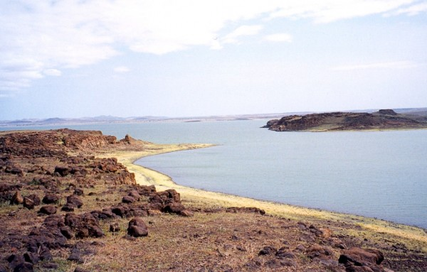 Lake Turkana is endangered primarily by Ethiopia's construction of a hydroelectric and irrigation dam on the Omo River, which replenishes the lake seasonally. Photo: Wikimedia commons